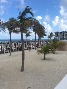 Beachside paradise